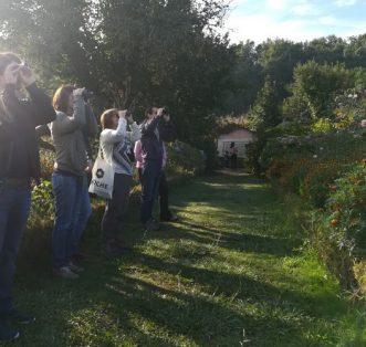 Eurobirdwatch 2020. Observação de aves no Mosteiro de São Martinho de Tibães.