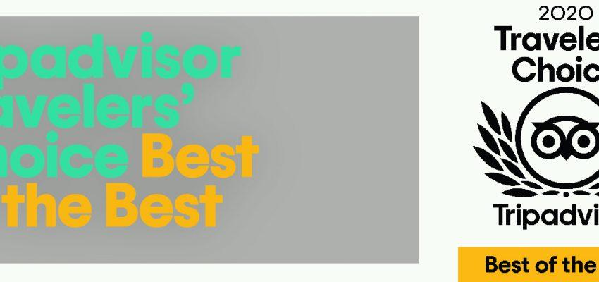 Prémio Best of the best 2020, atribuído ao Mosteiro de Tibães pelo site Trip Advisor